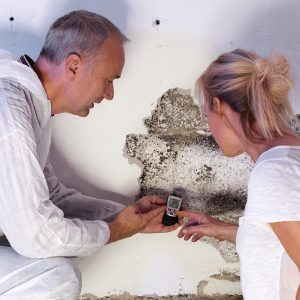 Mold Damage Restoration | Inland Empire | Paul Davis Restoration